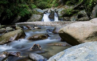 What are the Benefits of Drinking Spring Water?