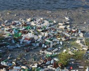 How Can We Stop Water Pollution?