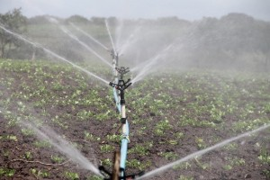 Improving Africa's Irrigation Infrastructure